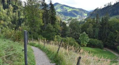 Wanderung von Steg im Tösstal zum Berggasthaus Hörnli, 1133 m.ü.M. im Zürcher Oberland.