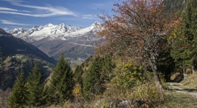3. Etappe der Wanderung / Höhenwanderung auf der Strada Alta im Tessin und im Valle Leventina von Anzonico via Cavagnago, Sobrio, Bidrè, Diganengo, Corecco nach Pollegio bei Biasca