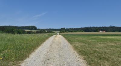Wanderung auf dem Thurgauer Seerückenweg durch das Thurgau, auch Mostindien genannt, von Müllheim TG via Schloss Klingenberg, Homburg, Haidenhaus nach Steckborn am Bodensee (Untersee)