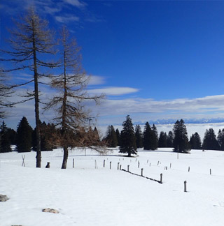 Geführte Schneeschuhtour und Wanderferien / Wanderreise / Winterferien im Val de Travers