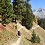 Ofenpass – Lü, Senda Val Müstair (Nationalpark)