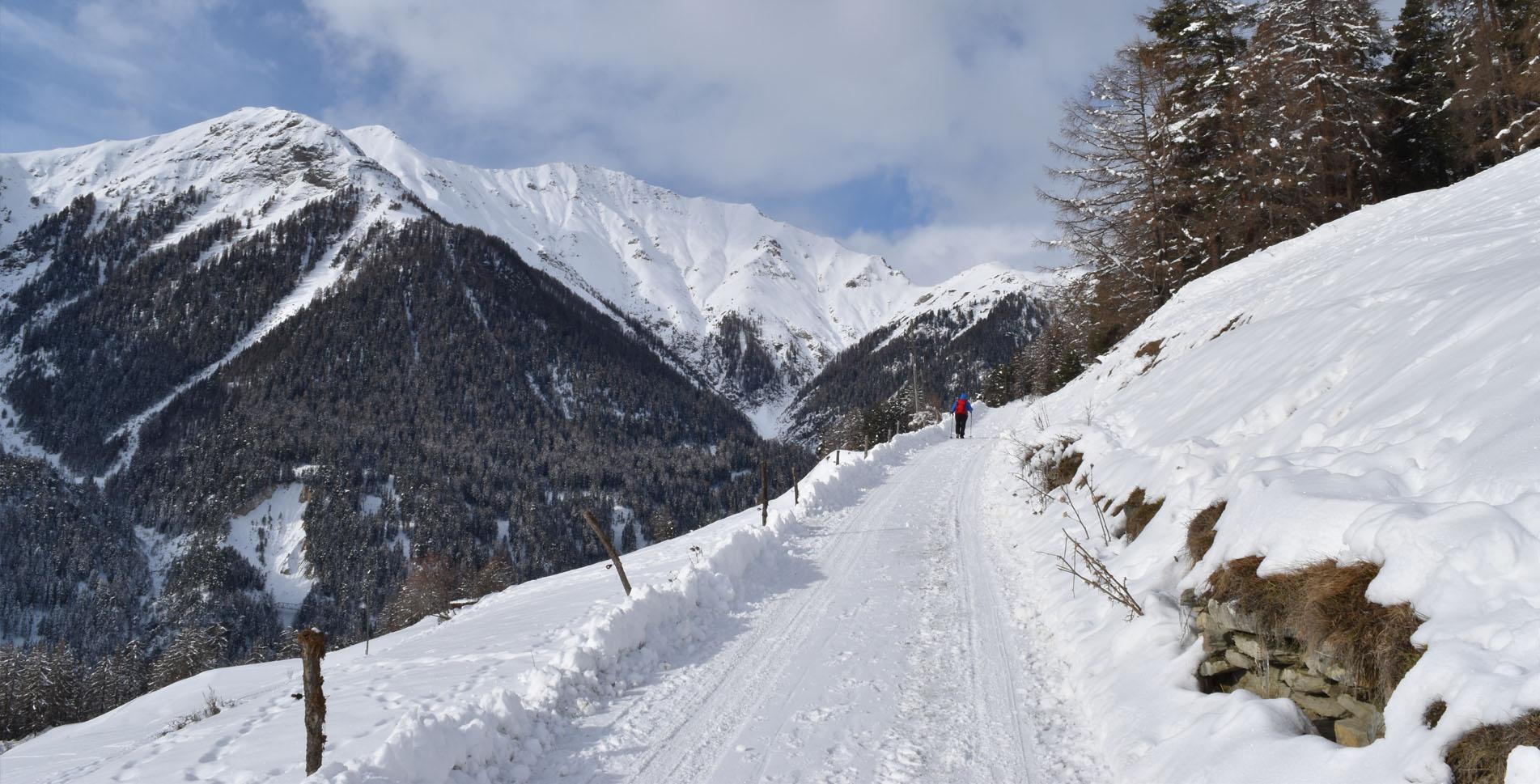 Winterwanderung im Val Sinestra, nähe Scuol im Unterengadin, von Vnà zum historischen Hof Zuort und wieder zurück nach Vnà mit der Möglichkeit von dort nach Ramosch hinunter zu schlitteln.
