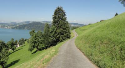 Aussichtsreiche Wanderung entlang des schönen Zugersees von Walchwil nach Zug