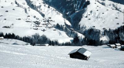 Winterwanderung von Waldegg (Beatenberg), bei Interlaken, nach Habkern