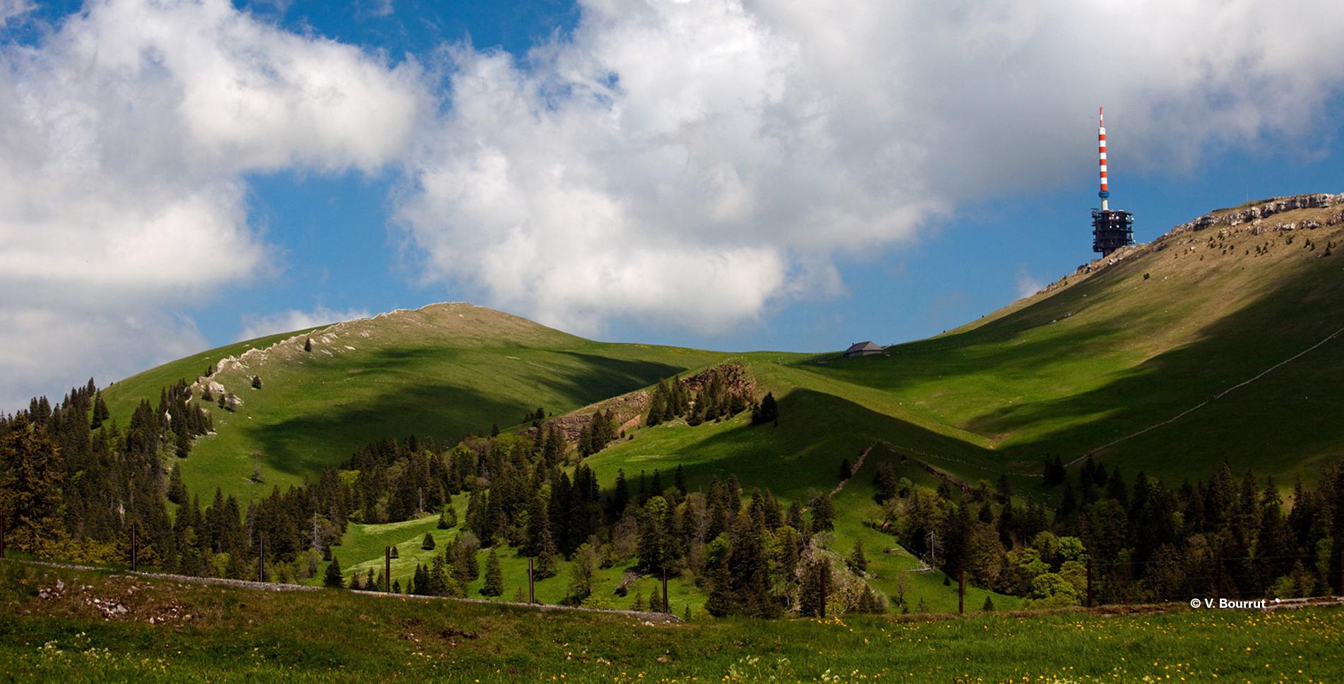 Wanderung auf dem Jura Höhenweg, der Jurakette, von Frinvillier auf den Chasseral