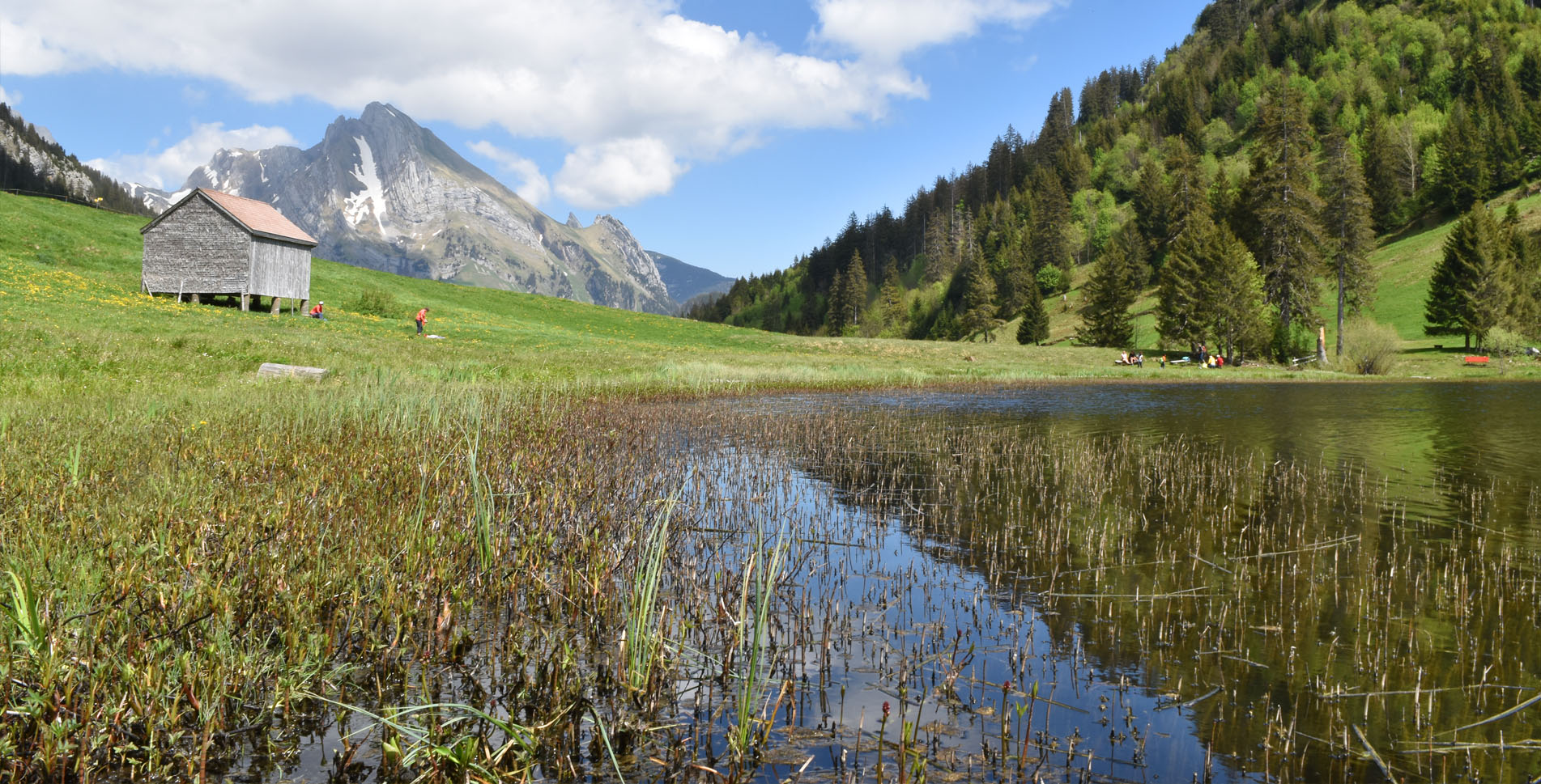 Wanderung von Unterwasser im Toggenburg via Thurwasserfälle / Thurfälle, Gräppelensee nach Alt St. Johann