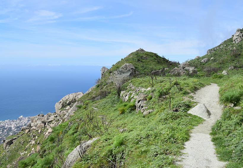 Küstenwanderungen und Weinwanderungen auf Ischia