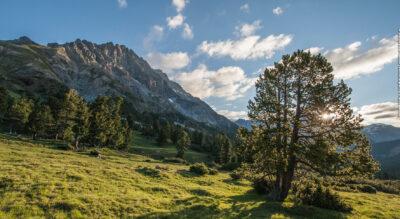 Wanderung ins Val Mingèr im Schweizerischen Nationalpark auf die Passhöhe Sur il Foss, 2315 m.ü.M.