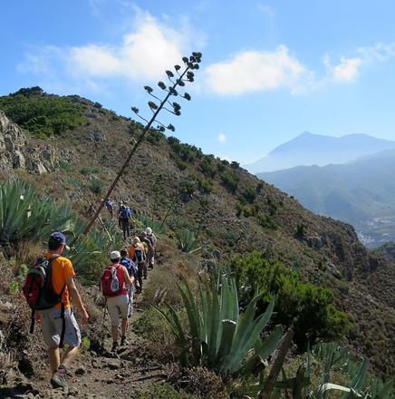 Wandern auf Teneriffa in Spanien auf einer Wanderreise / Wanderferien