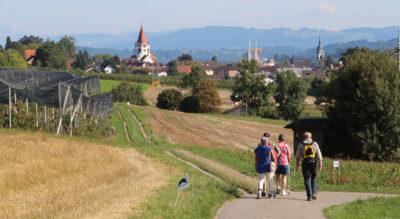 Wanderung im Thurgau von Weinfelden via Ottenberg, Stelzenhof, Berg TG nach Sulgen auf dem Mittelthurgauer Schlossweg