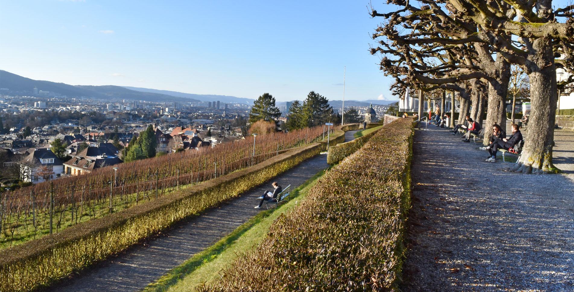 Wanderung auf dem Zürichberg mit Start beim Zoo Zürich via Restaurant Adlisberg, Restaurant Degenried, Sonnenberg nach Zürich Römerhof