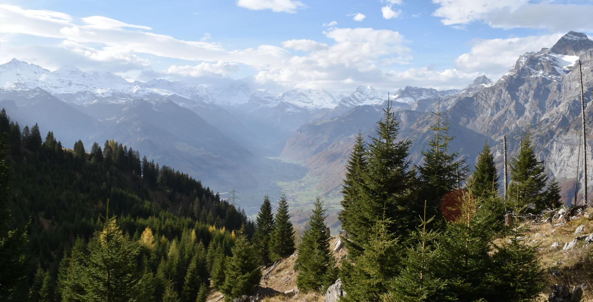 Wanderung oberhalb Ennenda im Kanton Glarus durch das Welterbegebiet der Tektonikarena Sardona auf dem Holzflue-Rundweg von der Bergstation Bärenboden via Aeugstenhütte durch den Aeugstenwald an den Fuss vom Schilt und via Alp Begligen zurück zum Bärenboden