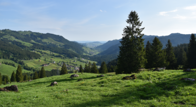 Wanderung von der Holzegg im Alpthal / Alptal beim Grossen Mythen via Stäglerenegg, Müsliegg, Alpwirtschaft Zwäcken, Halbegg, Furgglenstock, Alpwirtschaft Furggelen nach Brunni