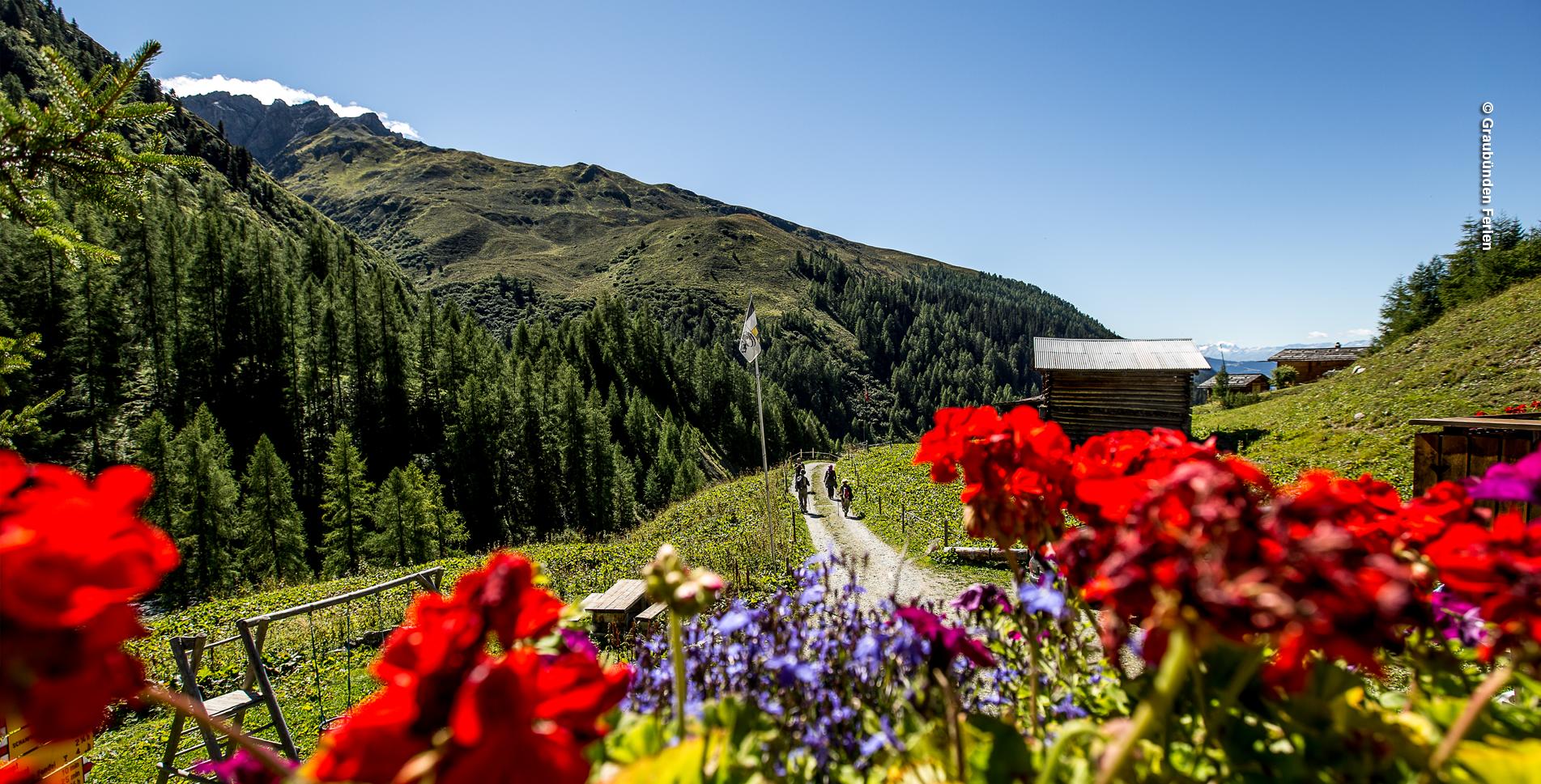 Wanderung von Arosa via Stausee Isel, Furggenalp, Medergen, Chüpfer Tälli, Berggasthaus Heimeli, Chüpfen, Sapün nach Langwies im Schanfigg