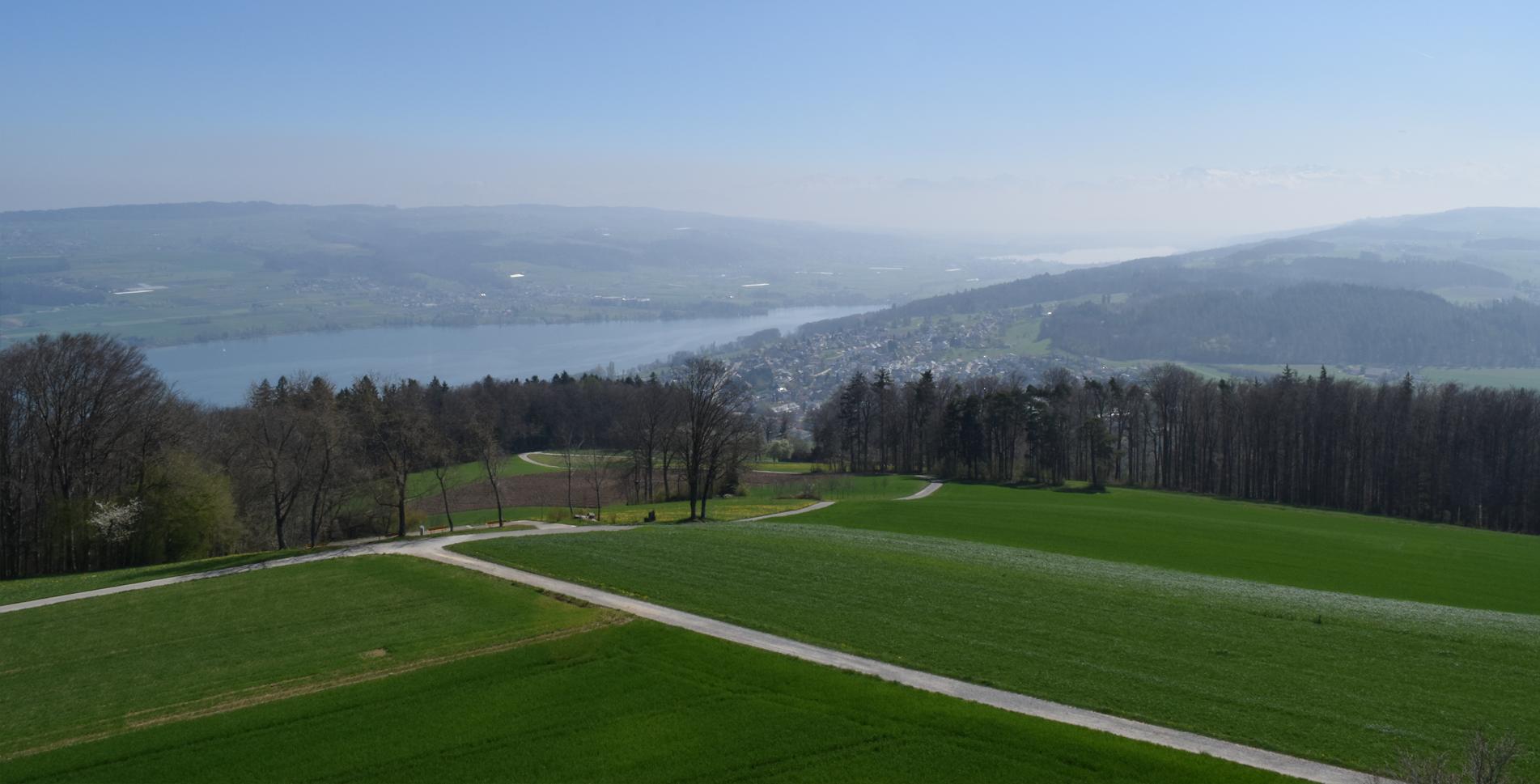 Wanderung von Birrwil am Hallwilersee auf den Homberg und zum Gasthof Homberg bei Oberflügelberg und zum Aussichtsturm Hochwacht und weiter nach Reinach AG und Beinwil am See