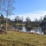 Illnau (Effretikon) – Naturschutzgebiet Wildert – Freudwil – Uster
