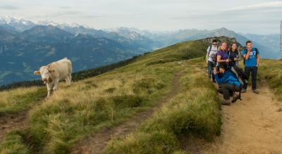 Wanderung vom Niederhorn auf dem Panoramaweg via Oberburgfeld, Chüematte nach Beatenberg Waldegg