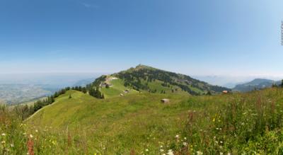 Wanderung von der Rigi Scheidegg via Rigi Unterstetten, Alpwirtschaft Schild, Restaurant Bärenstube, Rigi Wölfertschen-First, Rigi Staffel zur Rigi Kulm