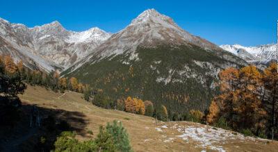 Rundwanderung im Schweizer Nationalpark von Champlönch P1 (Ofenpass) zur Alp Grimmels.