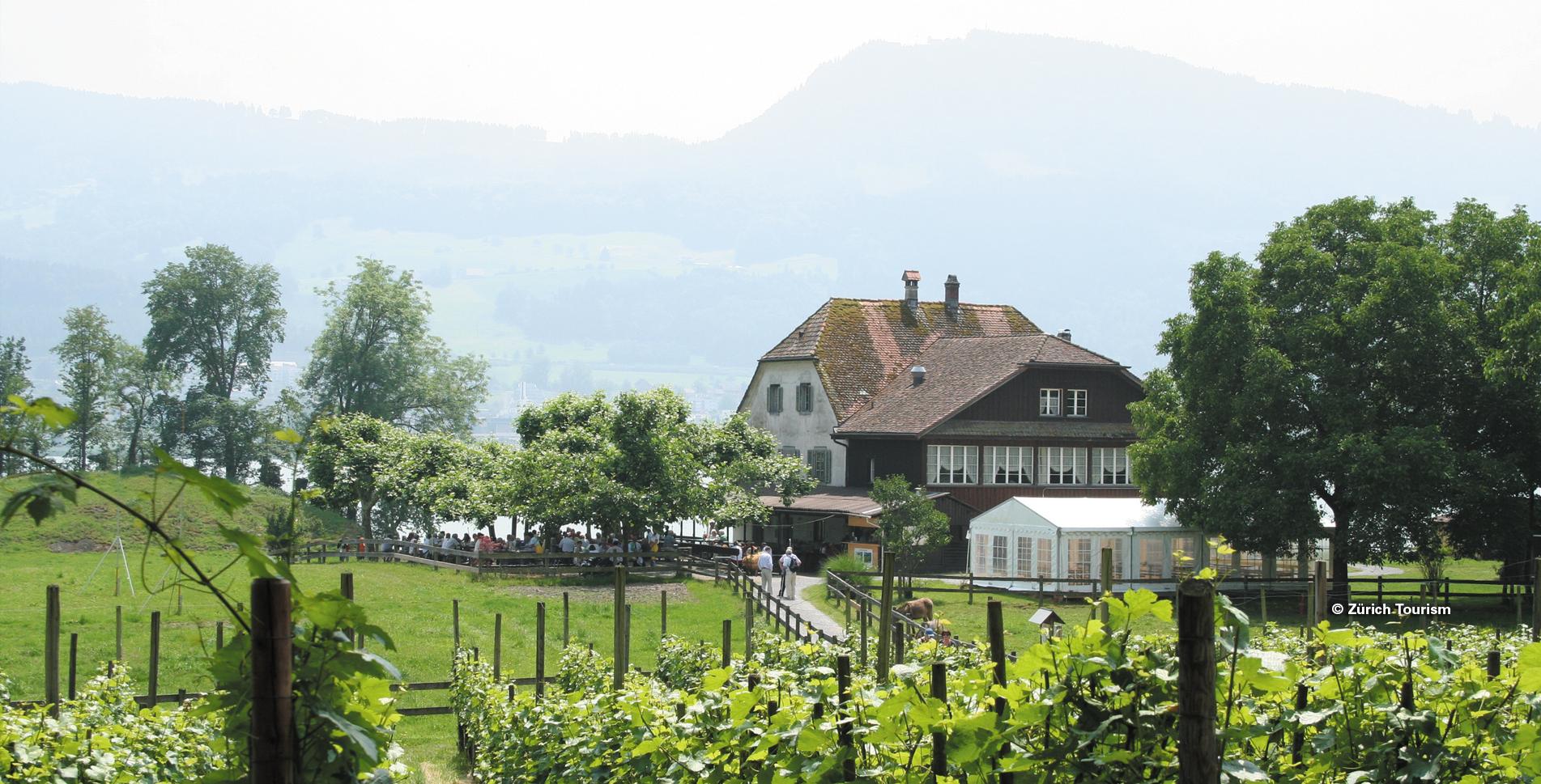 Wanderung entlang dem Seeuferweg am schönen Zürichsee von Horgen via Käpfnach, Meilibach, Seeguet, Halbinsel Au nach Wädenswil