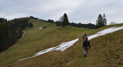 Wanderung von Willerzell am Sihlsee via Summerig, Stöckli-Hütte zum Stöcklichrüz und hinab via Diebishüttli, Waldeggli, Bräggerhof nach Lachen am Zürichsee