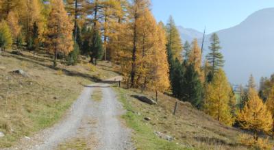 Wanderung auf der Via Albula von Preda ins Val Bever via Lai da Palpuogna, Crap Alv, Lais digl Crap Alv, Fuorcla Crap Alv, Spinas nach Bever bei St. Moritz