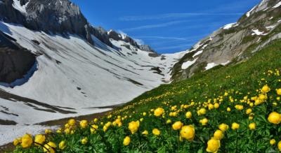 Wanderung von der Iffigenalp zum Iffigsee und zur Wildhornhütte und auf den Iffighore