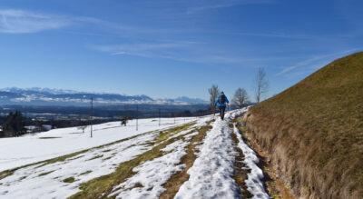 Wanderung im Züri Oberland von Adetswil, nähe Bäretswil, zum Berggasthaus Rosinli mit Ziel in Kempten nähe Pfäffikersee