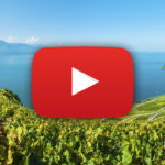 Weinterrassen von Lavaux