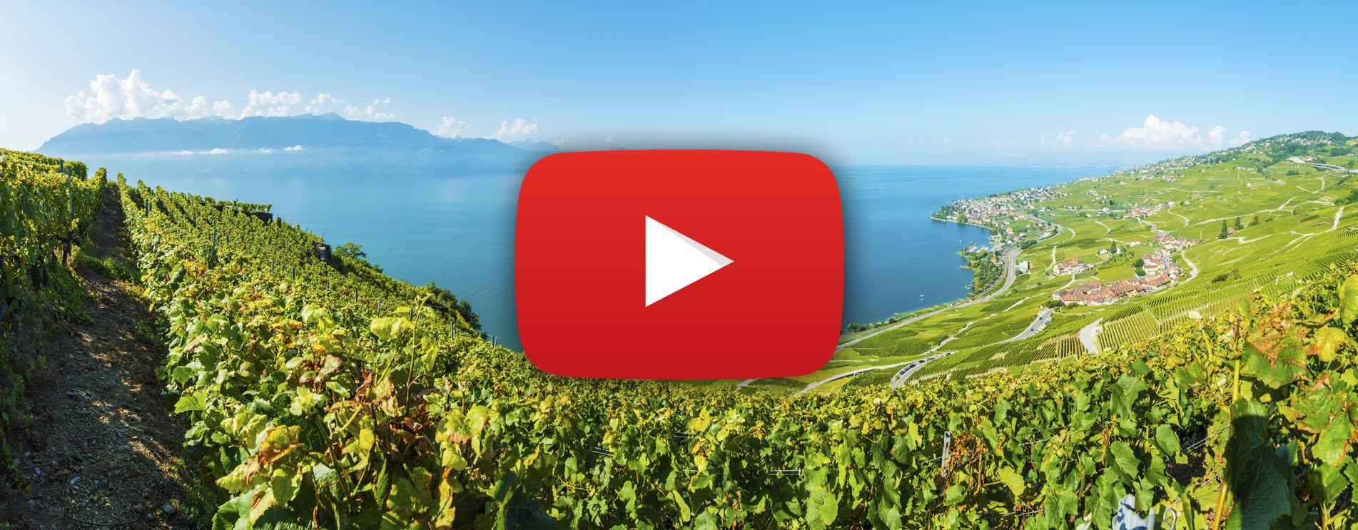 Film zur Wanderung durch die Weinterrassen von Lavaux