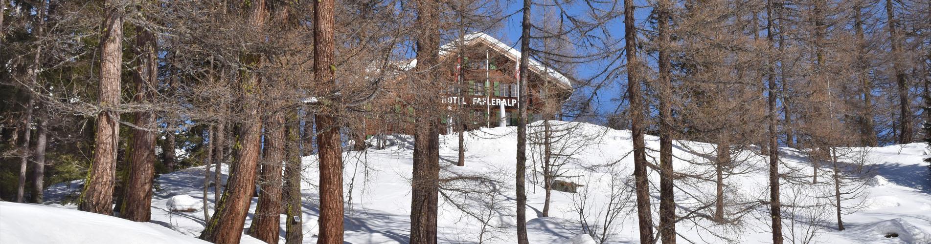 Hüttentouren im Winter – Winterwanderungen und Schneeschuhtouren zu Hütten