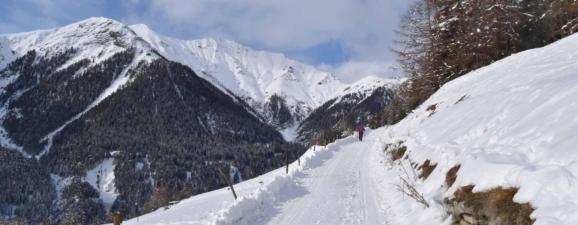 Winter-Rundwanderungen ohne Bergbahn – Die schönsten Winterwanderungen und Winterwanderwege ohne eine Bahn zu benützen