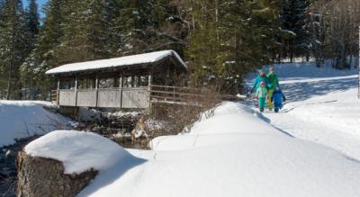 Winterwanderung in Adelboden auf dem Panoramaweg und Hörnliweg zur Aussichtskanzel Hörnli / Höreli und zum Taubenfels