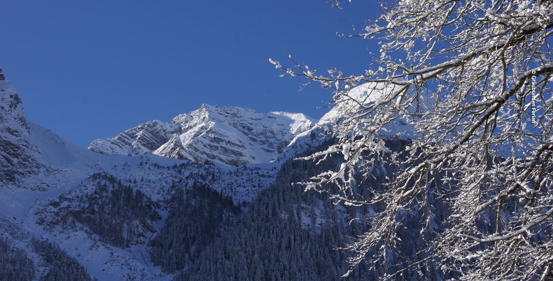 Winterwanderung von Bergün via Buorchas, Latsch und wieder zurück nach Bergün / Bravuogn