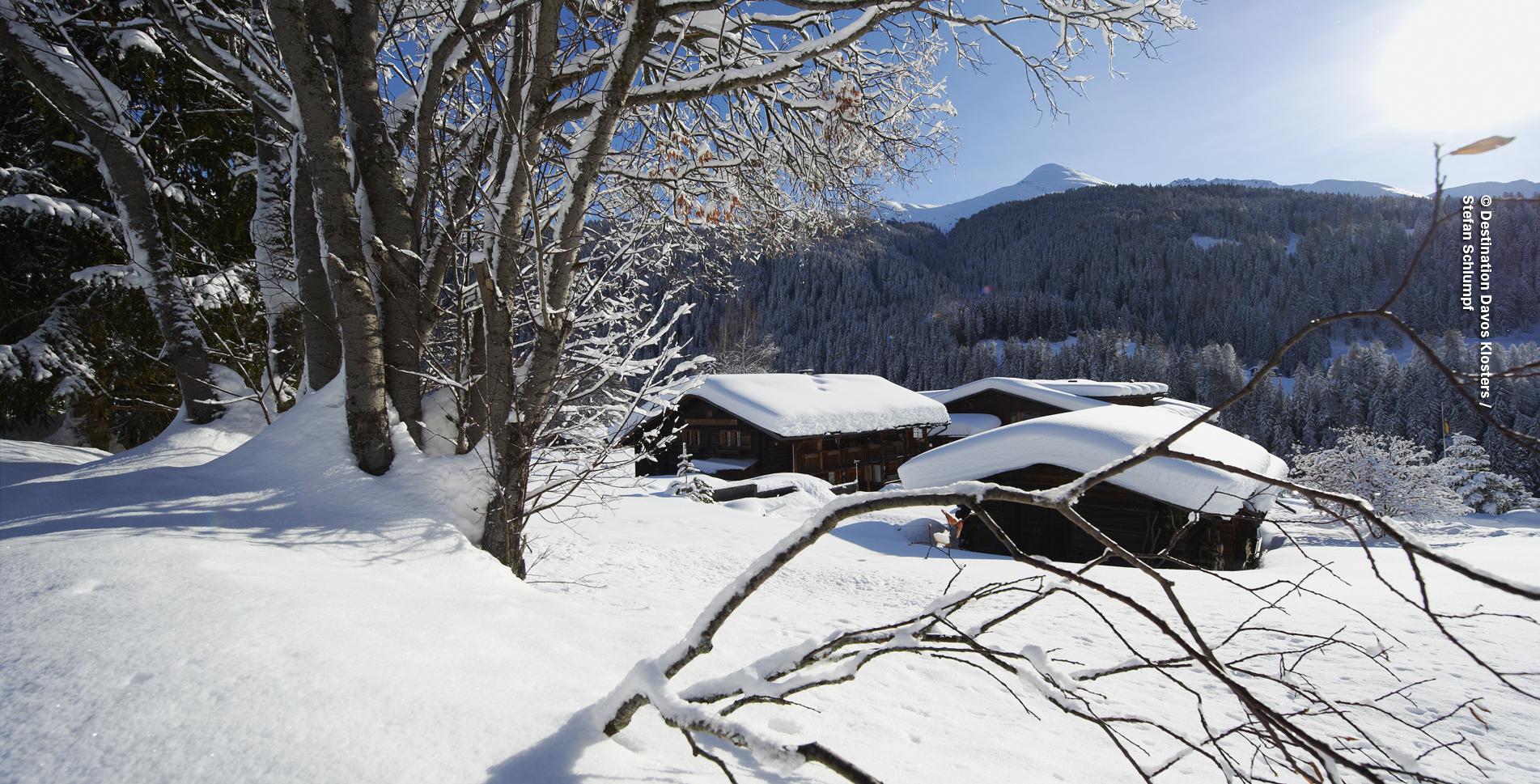 Winterwanderung von Davos Frauenkirch, Nähe Davos Platz, via Lengmatta nach Davos Glaris