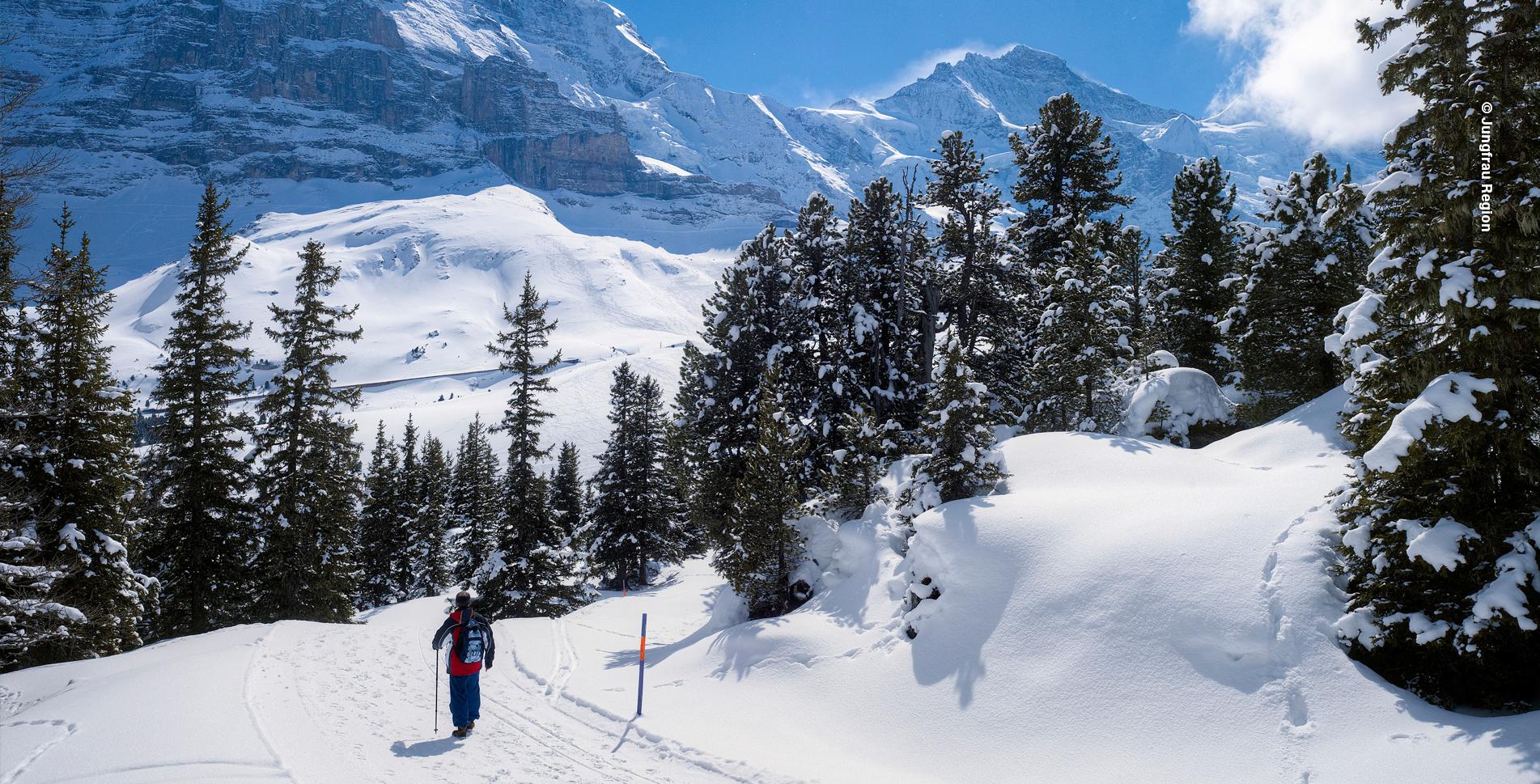 Winterwanderung vom Männlichen auf die Kleine Scheidegg (Wengen, Grindelwald)