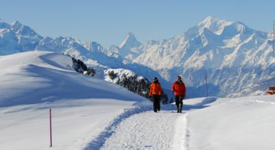 Winterwanderung von der Moosfluh via Hohfluh, Riederfurka zur Riederalp (Ried-Mörel)
