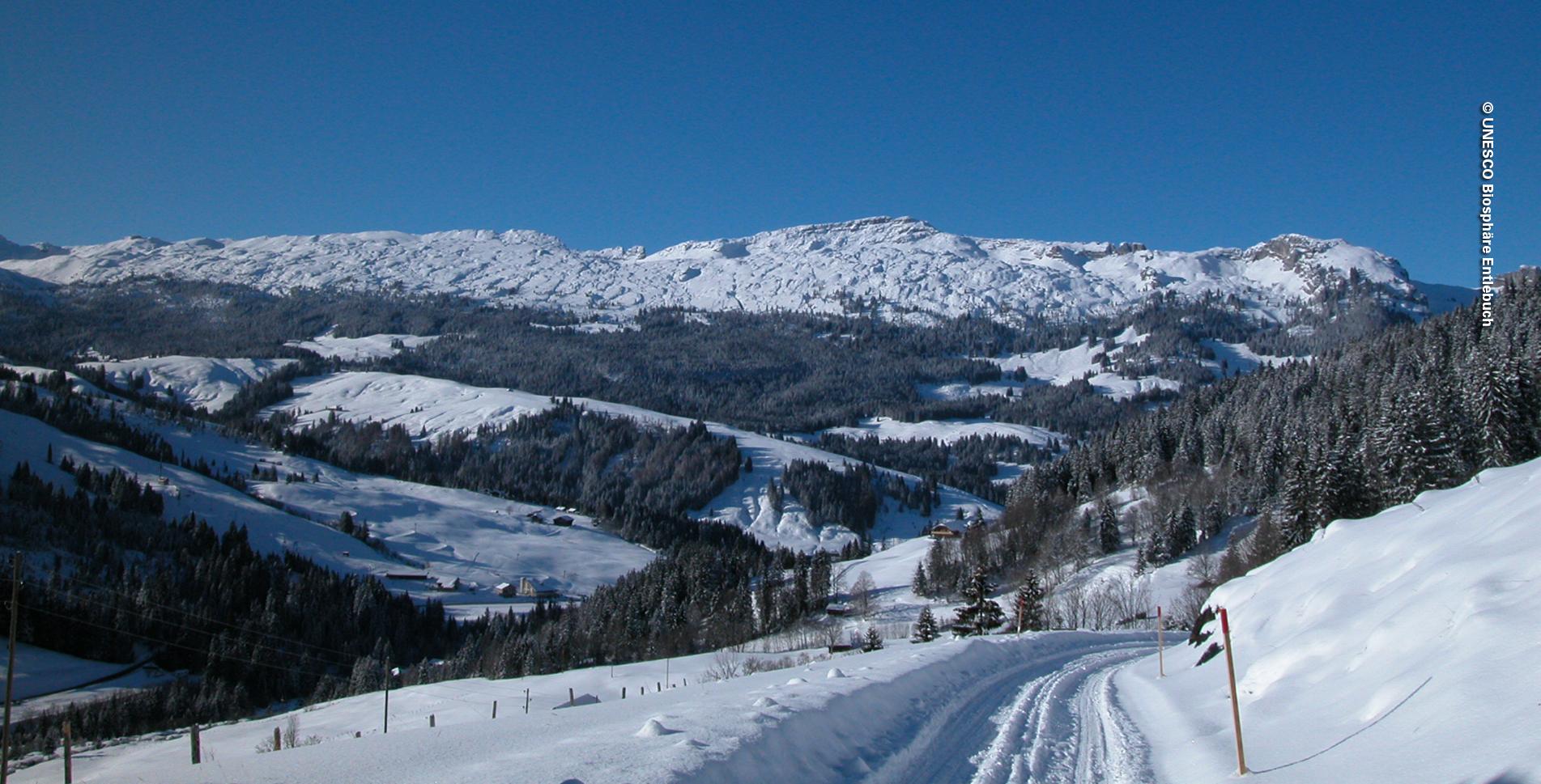 Winterwanderung in Sörenberg auf dem Panorama-Rundweg