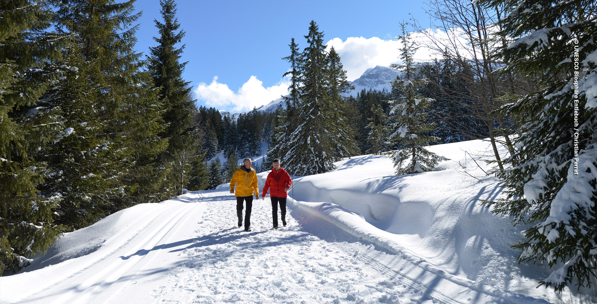 Winterwanderung von Sörenberg Bergstation Rossweid via Salwideli nach Kemmeriboden-Bad