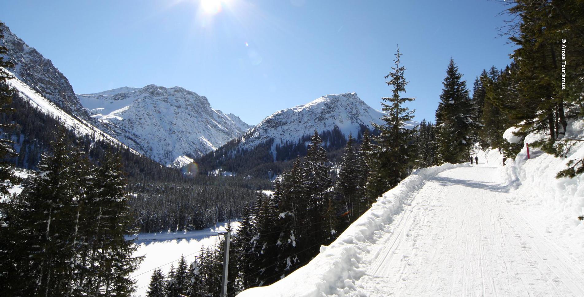 Winterwanderung im Schanfiggtal von Arosa via Litzirüti nach Langwies GR