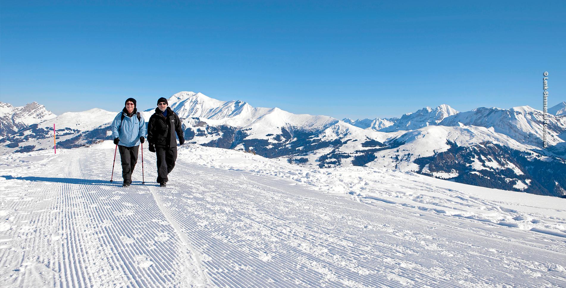 Winterwanderung von der Lenk Betelberg auf das Leiterli und Haslerberg und wieder zurück zum Betelberg