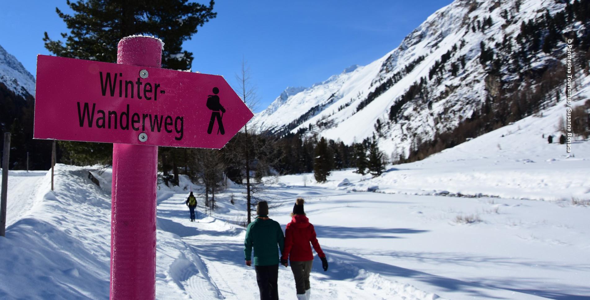Winterwanderung von Pontresina ins Val Roseg zum Hotel Restaurant Roseg Gletscher und wieder zu Fuss oder mit der Pferdekutsche zurück nach Pontresina