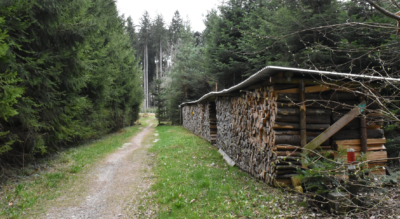 Wanderung im Tösstal auf dem Züri Oberland Höhenweg von Girenbad zum Aussichtspunkt Schauenberg (Ruine Schauenberg) und weiter zum Restaurant Schauenberg und zum Bichelsee
