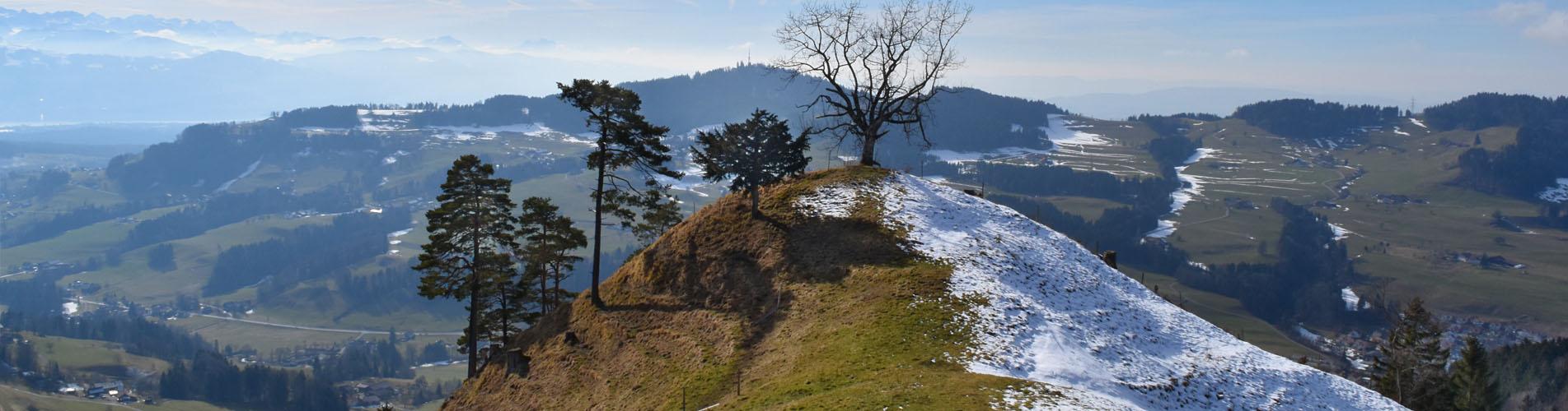 Wanderungen im Züri Oberland – Jetzt geht's los auf die schönsten Wanderwege im Zürcher Oberland.