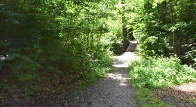 Wanderung von Zürich Rehalp via Zollikon, Rumensee, Schübelweiher, Küsnachter Tobel nach Küsnacht ZH